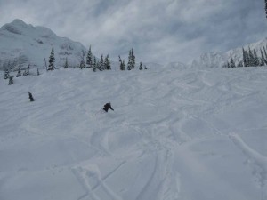 Powering through powder in Fernie