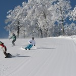 Perfect skiing in Japan