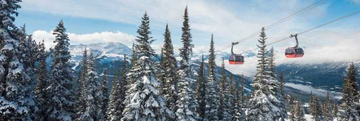 Whistler Guide for iPad